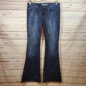Joe's Jeans Stardust Vanna Wash Super Flare 28 euc